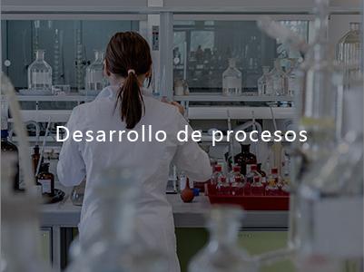 Desarrollo de procesos