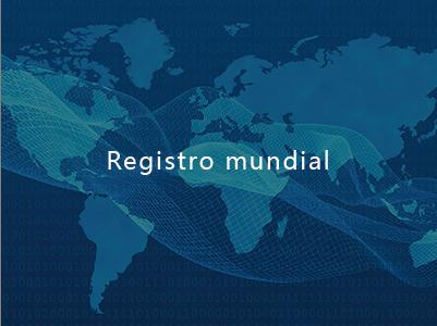 Registro mundial