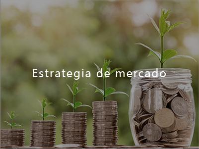 Estrategia de mercado